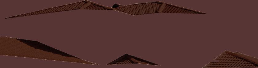 Roof Dark Brown Img 33