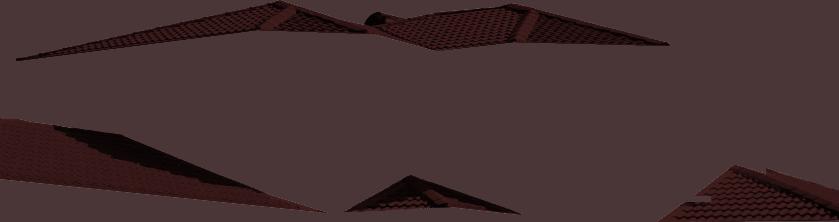 Roof Manganese Img 39