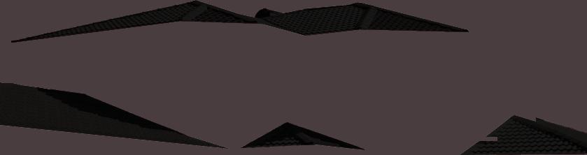 Roof Black Img 41